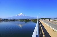 山梨県 河口湖 残雪の富士山と河口湖大橋とライダー