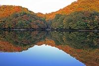 青森県 夕景の白神山地 十二湖(鶏頭場の池)の紅葉