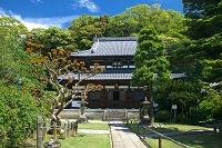 静岡県 清見寺 仏殿