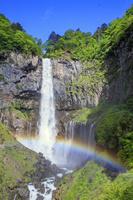 栃木県 新緑の華厳の滝と虹
