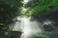 岐阜県 円原川の朝霧と光芒