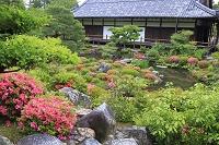 京都府 等持院