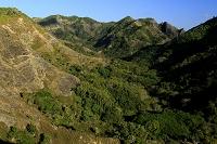 東京都 小笠原 父島 中山峠より衝立山と躑躅山 枕状溶岩の山肌