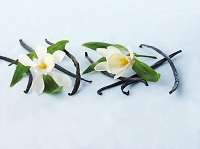 バニラビーンズとバニラの花