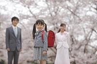 桜と新入学の赤いランドセルの女の子と両親