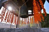 鐘楼の干し柿