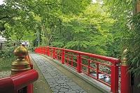 静岡県 修善寺温泉街と桂橋