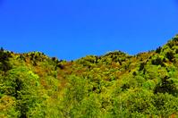 北海道 快晴の青空と新緑の山並み