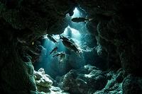 石垣島 海中 洞窟