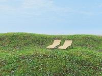 草花の丘と二つのラウンジャー
