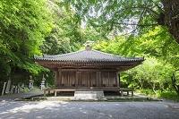 大分県 富貴寺