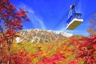 富山県 紅葉の立山ロープウェイ