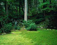 福井県 旧玄成院庭園