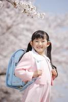 桜の下でランドセルを背負う日本人の女の子
