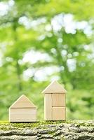 積み木の家と森