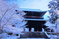 京都府 雪の南禅寺