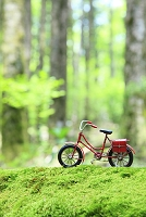 森の中の倒木に置かれたミニチュアの自転車