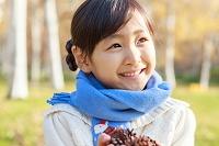 紅葉の中、松ぼっくりを持つ6歳の日本人の女の子
