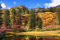 紅葉の滝見沼