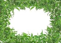 葉のフレーム CG