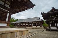奈良県 唐招提寺の講堂