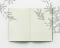 本とオリーブの木の影