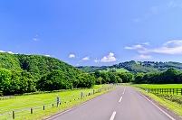 北海道 日高の牧場地帯の道