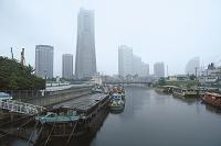 大岡川河口付近