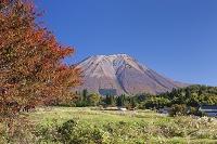 鳥取県 紅葉の大山