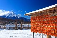 山梨県 忍野村 富士山
