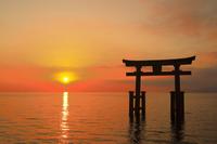 滋賀県 朝日の白髭神社
