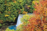 岩手県 紅葉の松川渓谷 森の大橋からの眺め