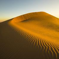 アラブ首長国連邦 アブダビ ルブアルハリ砂漠