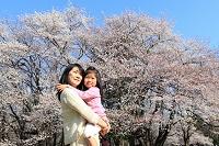 東京都 お花見をする親子