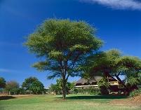 ボツワナ ロッジ ホテル 宿 チョベ国立公園 カサネ
