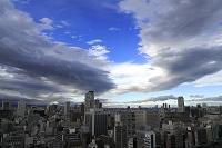大阪府 大阪市 雨雲