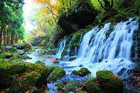 秋田県 鳥海山麓 秋の元滝