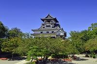 愛知県  犬山城