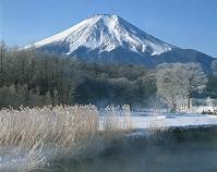 山梨県 霧氷と富士山