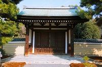 京都府 建仁寺 矢の根門