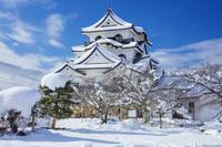 滋賀県 雪の彦根城 天守