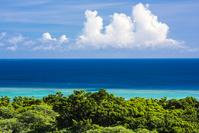 沖縄県 今帰仁城跡の海
