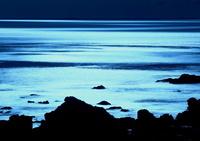 真冬の光と影の海面