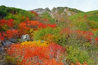 長野県 八合目の紅葉と御嶽山