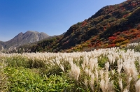 大分県 沓掛山山腹より三俣山を望む