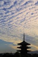 京都府 八坂の塔とうろこ雲広がる夕刻の空