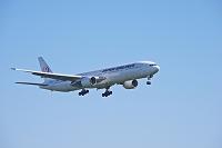 北海道 飛行機 JAL