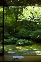縁側と緑の庭