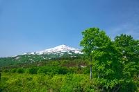 秋田県 新緑と残雪の鳥海山