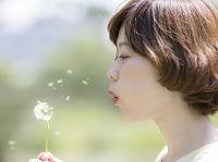 タンポポに息を吹く日本人女性